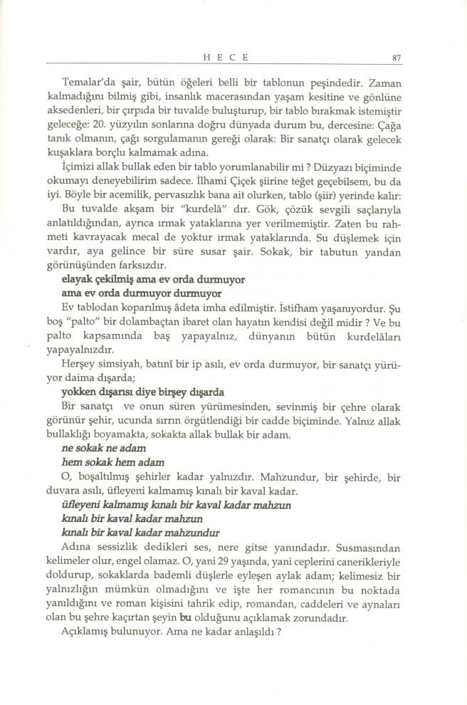ilhami-cicek-87