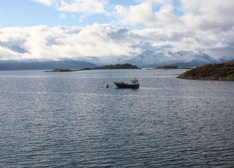 Norveç #Norway