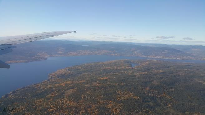 norveç ormanları